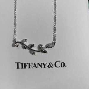 抜け感のあるスタイルが完成 ティファニー Tiffany&Co ネックレス 2020トレンド感満載なアイテム(hiibuy.com SHXXXr)-3