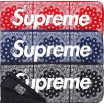 素敵な2020秋冬 AW Supreme x The NORTH FACE 大容量のあるスリーピングバッグ(hiibuy.com ziK9fu)-1